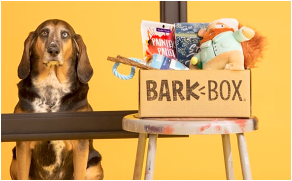 BARKSHOP – THE PUP'S CHOICE